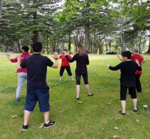 Group of people doing tai chi on the grass under the trees