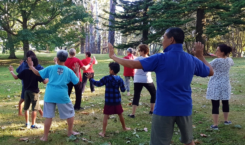 Last chance for summer tai chi 2018