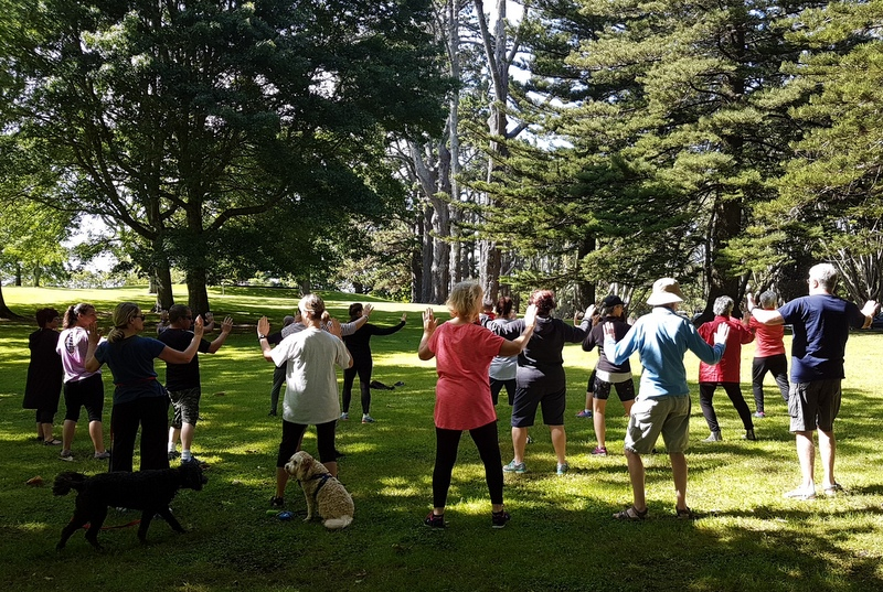 Free summer tai chi in Cornwall Park
