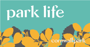 Park life logo, yellow flowers and leaves on a turquoise backgroud