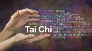 Hands holding words including harmony, martial art, centred, exercise, health