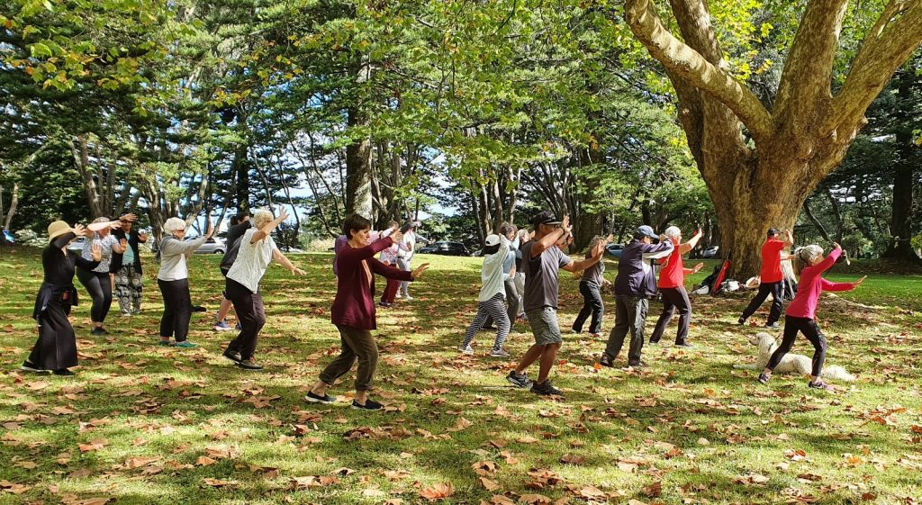 Group of people doing tai chi under a tree in a park